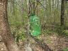 Diese Vogelfutterflaschen im Wald beindrucken Olga sehr +++ Эти кормушки для птиц произвели на Ольгу неизгладимое впечатление