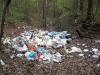 In den Charkower Wäldern gibt es leider nicht nur schöne Ecken +++В Харьковских лесах были, к сожалению, не только красивые места