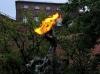 Krakau lebt von seiner Drachenlegende. Dieser hier speit in unregelmässigen Abständen Feuer - immer nur ganz kurz, darum muss ich mit einer nicht so tollen Qualität des Fotos leben
