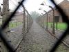 Einer der Todesstreifen mit Hochspannungszäunen in Auschwitz I