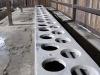 Sanitärräume ohne Wasser und Hilfmittel für die Häftlinge - Toilettengang für Hunderte gleichzeitig und nur mit einem kurzen Zeitfenster, danach wurde weggeprügelt