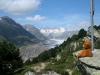 Bonnie am Großen Aletschgletscher