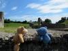 Zwei Kumpel in Augusta Raurica - in den Ruinen eines Tempels