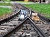So können wir keinen Zug verpassen!