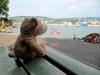Heini würde so gern im Züricher See baden, aber ohne Badehose geht das leider nicht