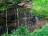 Ruhige Gewässer = herrliche Spiegelung!