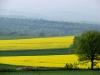 Prachtvolle und farbenfrohe Landschaft
