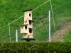 Mehrgenerationenhaus für Vögelchen
