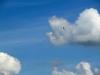 Im Himmel sieht man hin und wieder ein paar Segelflieger vorbeischweben.