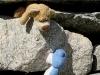 Beim Bergwandern ist die herzliche Tatzenhilfe einfach unverzichtbar.
