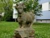 Dresden - Die Ziege, von Eva Backofen