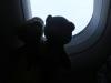Dann sind wir endlich geflogen. Ihr könnt mir glauben, auch Bären träumen vom Fliegen! Den echten Wolken so nah zu sein, fanden wir beide superklasse!