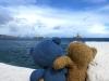 Wir konnten auch viele große Schiffe am Horizont sehen und träumen seitdem von der Erobärung vieler anderer Inseln.