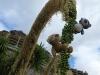 Wir merkten uns, dass grüne Früchte nicht lecker sind und aßen nix mehr mit dieser Farbe. Auf dieser Pflanze konnten wir beide wenigstens wie echte Tarzans klettern und schaukeln!
