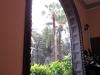 Ein Regenguß macht auch auf einer Sonneninsel Spass ... wenn man im Trockenen sitzen und das Fallen der Tropfen auf die Palmenblätter vor dem Haus beobachten kann.