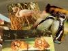 Diese Postkarten vom Dresdner Zoo warten eigentlich schon viel zu lange darauf, versendet zu werden.