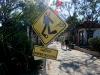 Auf der kleinen Insel Gili Air warnt man eher vor Tauchern auf dem Weg